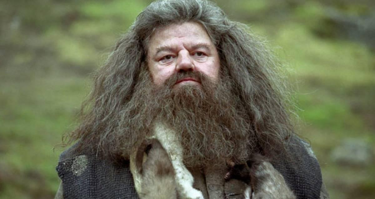 Fantastik Canavarlar 3 Hagrid